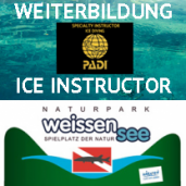 ICE INSTRUCTOR